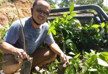 stefanus pusung inisiator penanaman 3000 bibit pohon mahoni