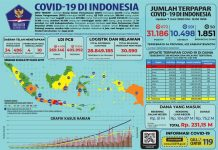 perkembangan corona indonesia